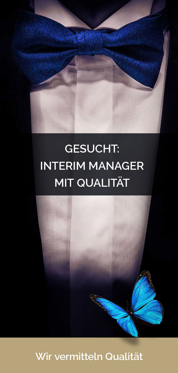 Flyer für interessierte Interim Manager als PDF-Datei
