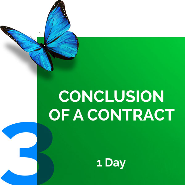 Conclusion of a Contract
