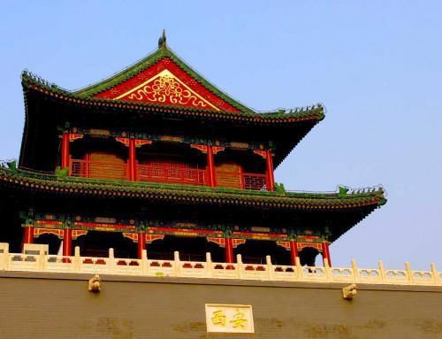 Case Study: Interim Finance Director China